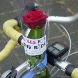 ride for the roses.08